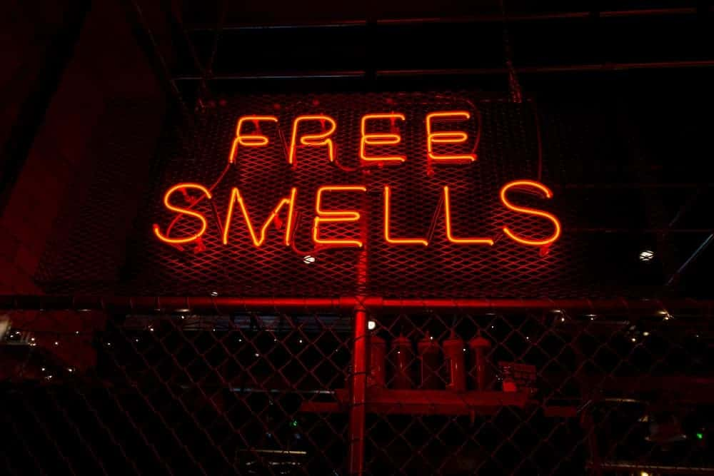 Have You Ever Tried to Google a Smell?